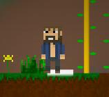 2D Minecraft