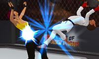 3D Dövüş Sanatı