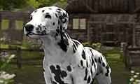 3D Köpek Simülatör