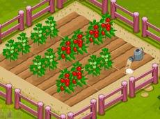 Benim Çiftliğim