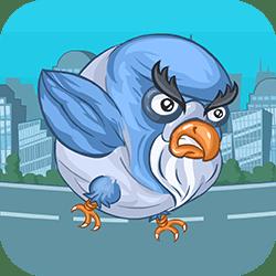Bombacı Güvercin 2