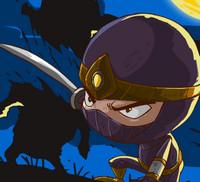 Çılgın Ninja