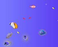 Disko Balık