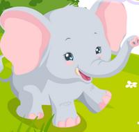 Fil Bakımı
