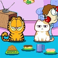 Kedi Besleme 2