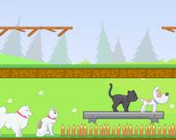 Kedi Köpek Aşkı