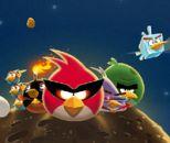 Kızgın Kuşlar