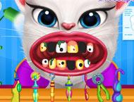 Konuşan Kedi Dişçi