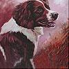 Köpek resimli yapboz