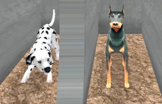 Köpek Yarışı Simülatörü