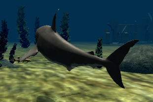Köpekbalığı Simülator