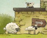 Koyunlar Eve 2