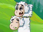 Koyunları Diz