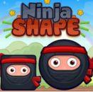 Ninja Vuruşu