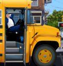 Okul Servisi Şoförü
