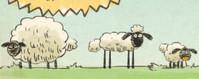 Oyunlar1 Koyun