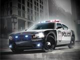 Polis Arabası Park Et