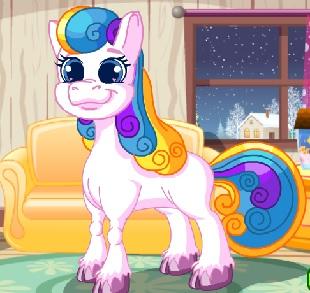 Pony Süsleme