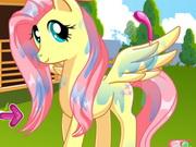 Pony Yıkama