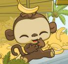 Tatlı Şempanze