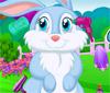 Tavşanı Yıka