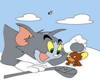 Tom Ve Jerry Boyama
