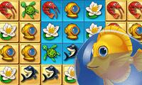 Balık Akvaryumu 3