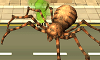 Örümcek Atağı
