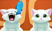 Sevimli Kedilere Balık Yedirme