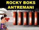 Rocky Boks Antremanı